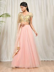 Gold & Pink Embroidered Lehenga Set