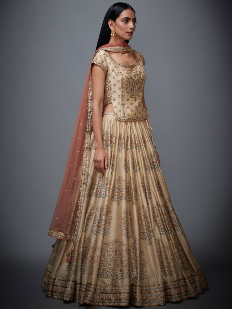 Beige & Rust Hand Embroidered Lehenga Set