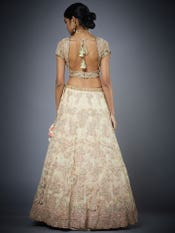 Pastel Peach & Gold Rashika Embroidered Lehenga Set
